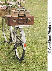 szüret, bicikli, mező