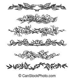 szüret, virágos, oldal, mérőkörző