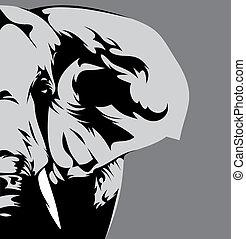 szürke, elefánt