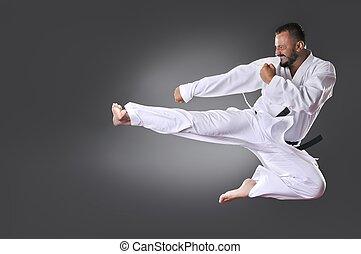 szürke, fiatal, öv, karate, black háttér, hím, megrúg, jelentékeny