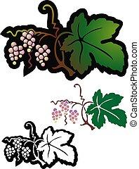 szőlő, vad, érés, kevés
