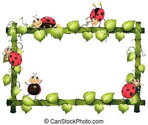 szőlőtőke, sablon, természet