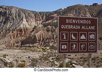 szabad activities, képben látható, a, altiplano