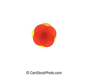 szablony, słońce, wektor, logo