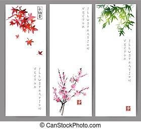 szalagcímek, juharfa, három, bambusz, sakura