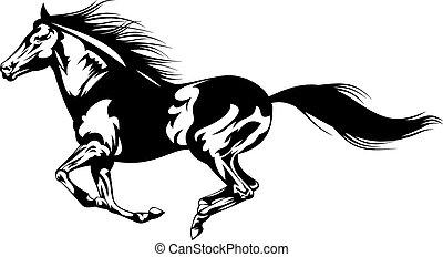 szary, koń