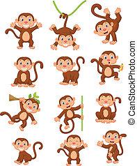 szczęśliwy, komplet, rysunek, zbiór, małpa