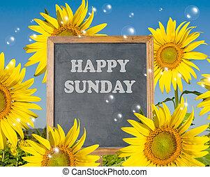 szczęśliwy, niedziela, z, rozkwiecony, sunfloweron, tło