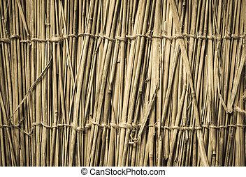 szczegółowy, doskonały, kasownik, wysoko, tło., bambus, texture.