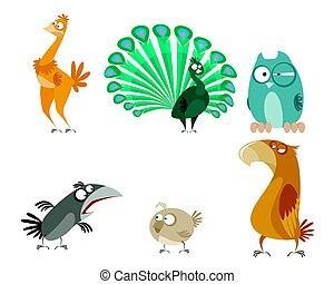 sześć, komplet, ptaszki