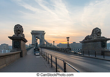 Szechenyi Bridge in Budapest Hungary. Beautiful Danube river. Night view.