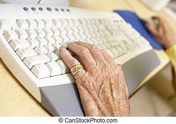 személy, számítógép, használ