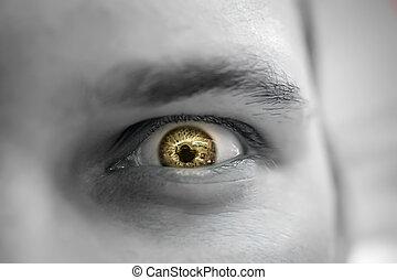 szem, mérges, sárga, bús, látszó, súlyos, ember