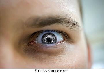 szem, mérges, szürke, bús, látszó, súlyos, ember