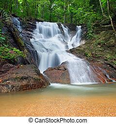 szenerie, immergrün, natur, nationalpark, tropische , kaskade, wasserfall, dschungel, hintergrund, wild, thailand, plants., wald