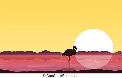 szenerie, sonnenuntergang, flamingo, silhouette, see