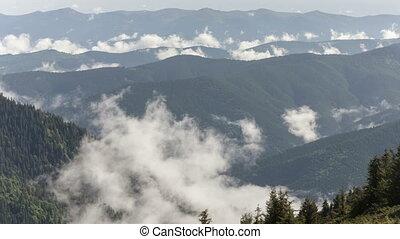 szenische ansicht, von, berg, wälder, hülle, per, nebel