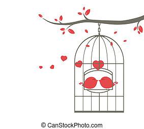 szeret madár, képben látható, a, kalitka