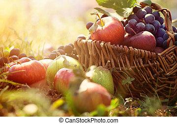 szerves, gyümölcs, alatt, nyár, fű