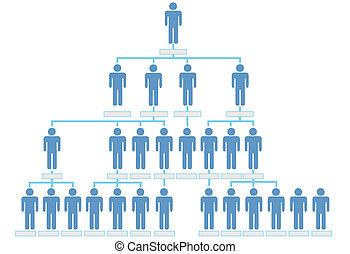 szervezet, közös hierarchia, diagram, társaság, emberek