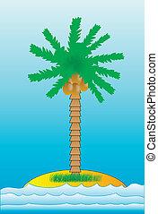 sziget, pálma, tenger