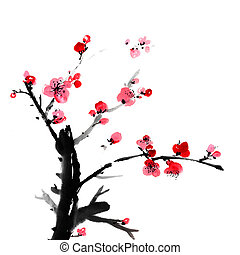 szilva virágzik