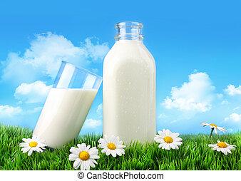 szkło, trawa, margerytki, butelka, mleczny