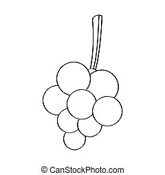 szkic, winogrona
