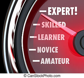 szlakując, amator, ekspert, poziom, nowicjusz, albo, ...