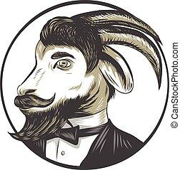 szmoking, goat, rajz, csomó, karika, szakáll