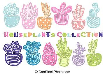 szobanövények, vektor, húzott, gyűjtés, kéz