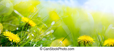 sztuka, abstrakcyjny, kwiatowy, wiosna, albo, lato, tło, z, świeży, trawa, i, skoczcie kwiat