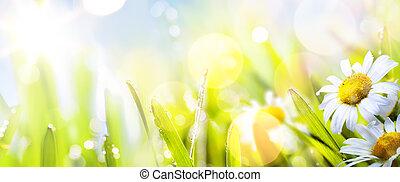 sztuka, abstrakcyjny, słoneczny, springr, kwiat, tło