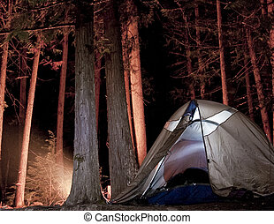 táborhely, alatt, a, erdő, éjjel