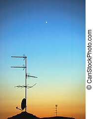 tál antenna