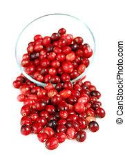 tál, cranberries