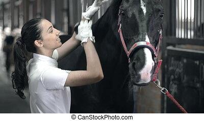 tätigkeiten, bedienergeführt, pferdeartig