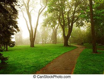 tågede, park