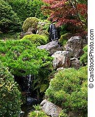 tè, cascata, giapponese giardino