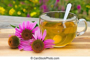 tè, echinacea., erbaceo, tazza