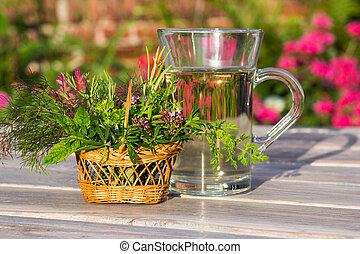 tè, use., medico, erbaceo, tazza
