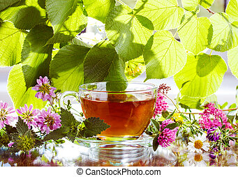 té herbario, con, hierbas frescas