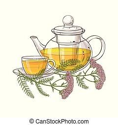 té, milenrama, ilustración