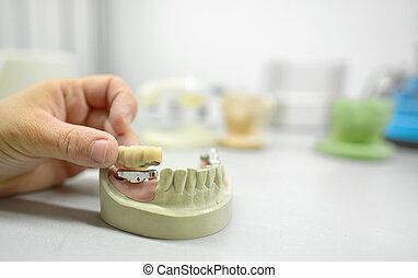 técnico, dental, laboratorio