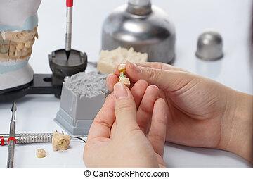 técnico, laboratorio, dental, articulator, trabajando