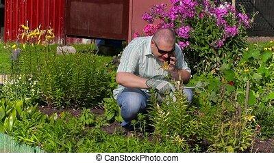 téléphone, homme, jardin, conversation