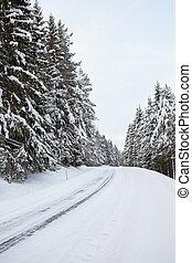tél, út, erdő
