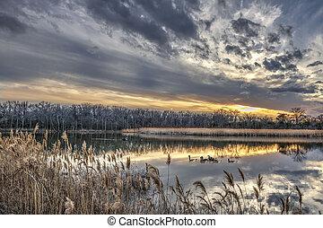 tél, chesapeake öböl, napnyugta, közben, tavacska, békés