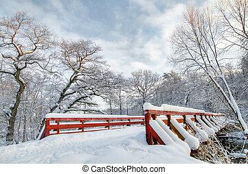 tél, fehér, erdő