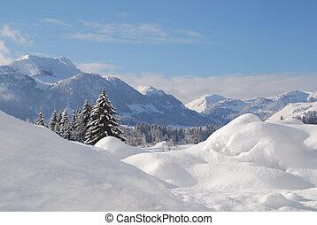 tél, hó, bitófák, osztrák, befedett, táj